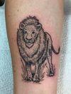 Little wood cut lion