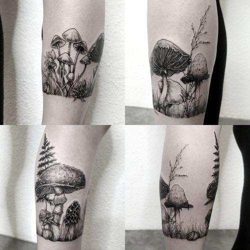 #botanical #mushroomtattoo #planttattoo #botanicaltattoo