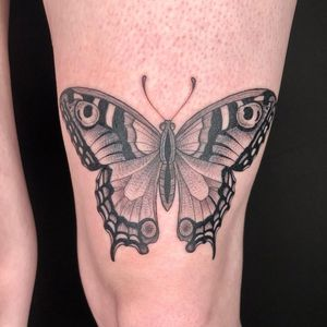 Butterfly on knee #blackandgrey #butterflytattoo #kneetattoo #finelinetattoo