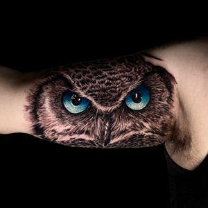 Owl tattoo. Love to tattoo animals. Hit me up!