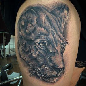 •FELINE•  —————— Done using @fkirons @empireinks @butterluxe_uk @ghostcartridges supplied by @starrtattoosupplies  —————— #tattoo #tattoos #uktat #uktta #tattooartist #blackandgreytattoo #uktattoo #fkirons  #empireinks #lion #liontattoo  #animaltattoo #realismtattoo #realistictattoo #lioness  ——————