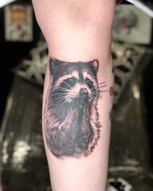 Hooooow cute is this #raccoon that @sfawkestattoos did on @giantshev 🦝 • Walk Ins taken everyday☺️ Email info@kakluckytattoos.com or DM for booking enquiries🏝 • #kakluckytattoos #capetowntattoo #tattoos #tattoo #art #kaapstad #raccoonlove #bnginksociety