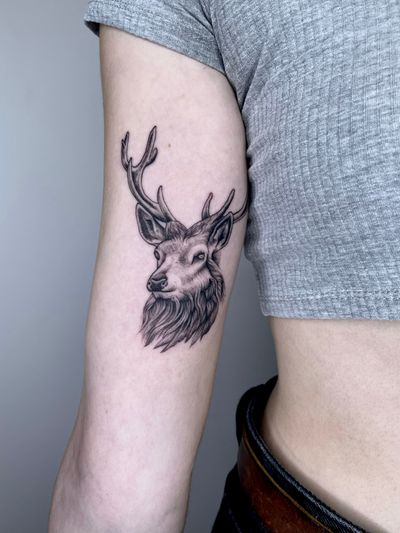 Elegant stag head for Julie. I can't get enough of animal tattoos! . #stag #stagtattoo #stagheadtattoo #deer #deerhead #deertattoo #deerheadtattoo #animaltattoo