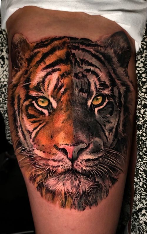 Great tiger realism by Nestor Palacios book your next tattoos with inknationstudio now !!!!