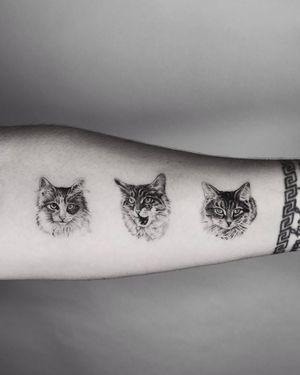 Tattoo from Marcin Potoczny