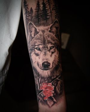 #wolf #forest #animal #bng #bnginksociety #bngsociety #blackandgray #warsaw #poland