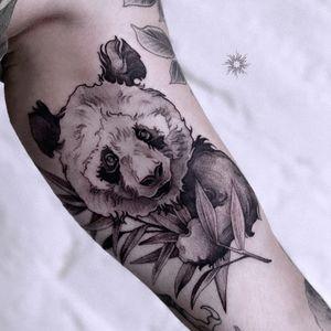 Cute panda !