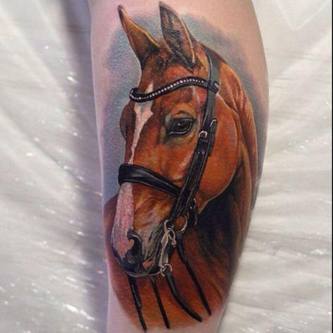 #portrait #horse #realistic #fullcolor #GienaRevess