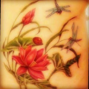 #lotus #colorfull