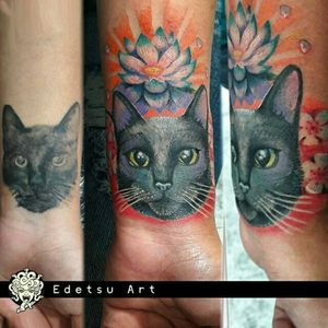 Plastic surgery to kitty cat! # draw #art #draw #tattoos #cat #cattattoo #lotusflower #coverup #fullcolor