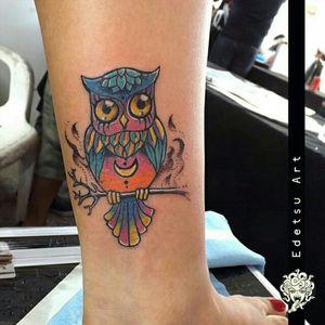 #owl #bird