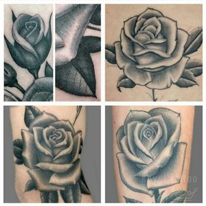 Roses by Stef Bastiàn  For info or bookings pls contact us at art@royaltattoo.com or call us at + 45 49202770 #royal #royaltattoo #royaltattoodk #royalink #royaltattoodenmark #helsingørtattoo #ElsinoreInk #tatoveringidanmark #tatoveringihelsingør #toptattoo #toptattooartist #rose #rosetattoo