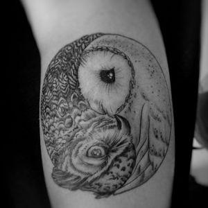 black and gray owl #blackandgray #owltattoo #owl #coruja