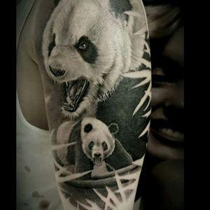 #panda #pandatattoo #animal #animaltattoos #animaltattoo #realistic #wild #asian #oslo #norway