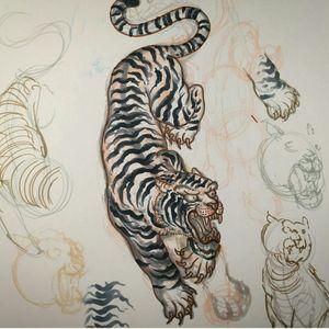 Tiger drawing by Stef Bastiàn  For info or bookings pls contact us at art@royaltattoo.com or call us at + 45 49202770 #royal #royaltattoo #royaltattoodk #royalink #royaltattoodenmark #helsingørtattoo #ElsinoreInk #tatoveringidanmark #tatoveringihelsingør #toptattoo #toptattooartist #tiger #tigertattoo #tigerdrawing #drawing