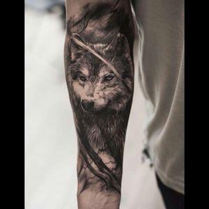 Beautifull wolf