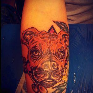Tributo a roko #tattoochile #CHILETATOO #learning #tattoo #animaltattoos