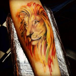 #katjaslonenko #lion #wildcats