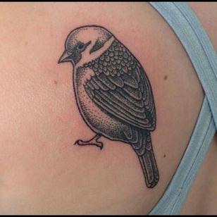 #sparrow #bird #dotwork #dotworktattoo #blackwork #sketchytattoo #kakapoink #nztattoo