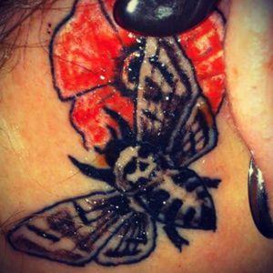 My Death-Heads Hawks Hawkmoth with little Japanese cherry blossom. #redflower #silenceofthelambs #deadheadmoth #behindtheeartattoo