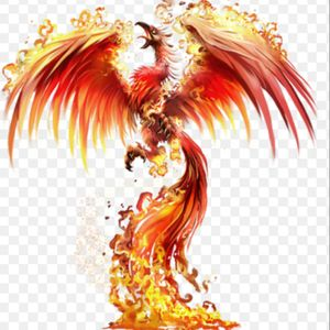 #megandreamtattoo have always wanted Megan to do a killer Phoenix on my side.