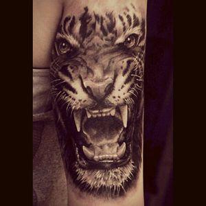 #tiger #loud #wildlife