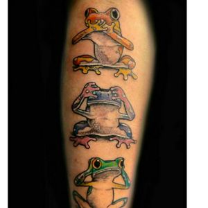 #frogs #seenoevilhearnoevilspeaknoevil