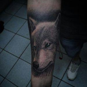 #wolf #wolves #tattoodo #electricink #inkedlife #tattoolife