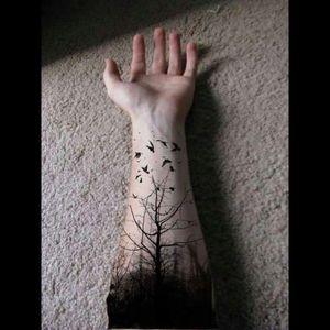 #black #forest #bats