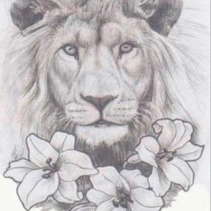 #lion #leo