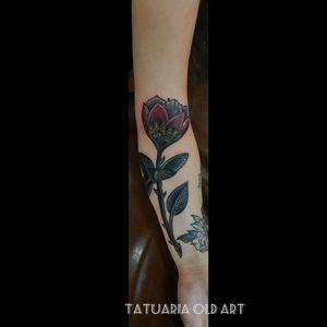 Tatuador Jimi Rocha #tattoo #rosetattoo #flowertattoo #mandalatattoo #indiantattoo
