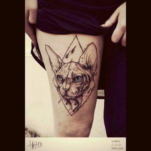 @sphynx @cat @tattrx