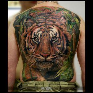 #backpiece #fullback #fullcolor #tiger #tigertattoo #tigerbackpiece #tigerhead #animal #animalhead #animaltattoos #nature #naturetattoo #wildcats #tigerstyle #colorfull #color #colorful #fullcolor #tattoo #dreamtattoo #watercolor #brasil #brazil #ink #realism #realistic #photorealistic #photorealism #hyperealism #linework #tattoos #art #tattooartist #inked #Tattoodo #colorbomb #tattooed #epic #great #japanesetattoo #japanese #love #cat #animals
