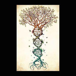 Tree of life #megandreamtattoo #meganmassacre #meganmassacredreamtattoo