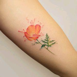 By #GeorgiaGrey  #poppy #watercolor #flower