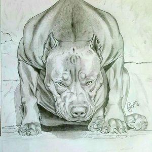 Mad dog finished#badass #pitbulltattoo #blackandgrey #pencildrawing #