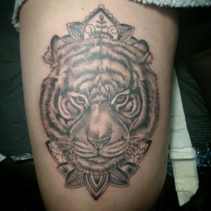 Black and grey Tiger Face and mandala, done at Tattoo convention bern 2016, switzerland Whit kaco Tattoo machines.#blackandgrey #jairoramirezart #tattooer #tattoo #tattoos