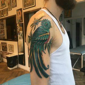 The Quetzal finally got his colors from @TimKlamer #timklamer #lefixcitytattoo  #quetzal #bird #QuetzalTattoo #color