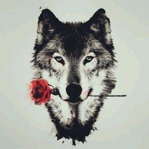 #wolf #lobo
