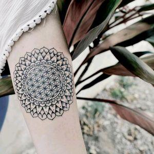 Amazing tattoo by brazilian artist @Raphaellopes ! #fineline #mandala #geometric #geometria