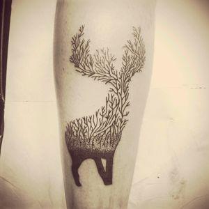 #branches #deer