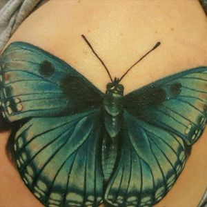 #bluebutterfly #photorealism #realisitictattoo