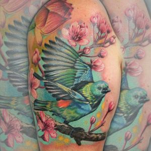 Had fun with this one #tattoo #tattooist #whitfieldtattoos #devontattoo #tattoos #tattooartist #tattooed #birdtattoo #barberdts #eternalink
