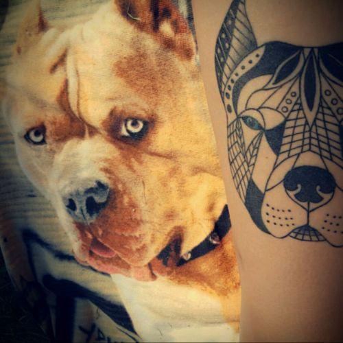 #pitbulltattoo #dogtattoo #blueeyes #inkedgirl #mandalatattooart ❤