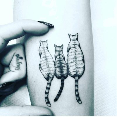 #cattattoo #cats #forearmtattoo #cat