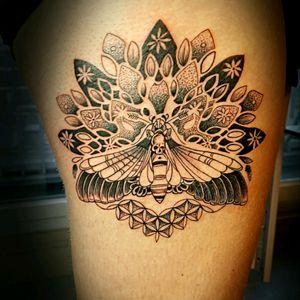 Tattoo of the day  By thedoud apprentice tattoo artist  #butterfly#butterflysphynx#butterflytattoo#butterflydrawing#butterflysketch#blackworkers#mandalatattoos#thedoud#thedoud#tattoolifestyle#girlytattoos#mandalatattoo#mandalaworks##like #like4like #TFLers #liker #likes #l4l #likes4likes #photooftheday #love #likeforlike #likesforlikes #liketeam #likeback #likebackteam #instagood #likeall #likealways #liking