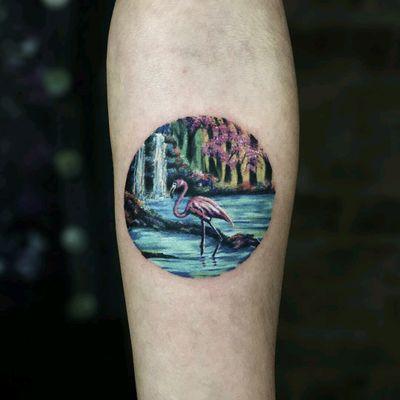 By #SerkanDemirboga #flamingo #bird #tropical #waterfall #nature #circle