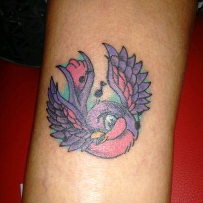 #Songbird #sparrow #bird