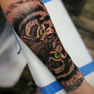 #tiger #tigertattoo #eyeofthetiger
