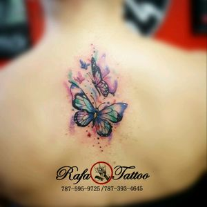 #rafatattoo #butterfly #watercolor #delicate #akashacartriges #worldfamoustattooink